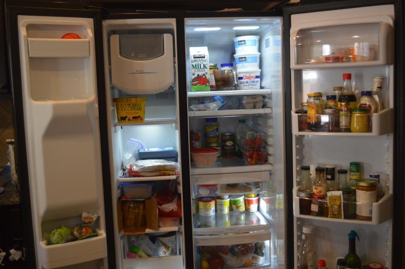 Refrigerator Purge